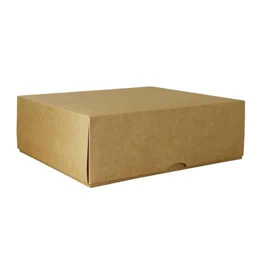 Dviejų dalių dėžė 300x250x100mm