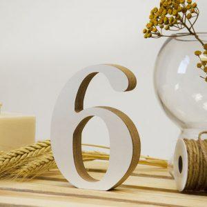 """Medinis skaičius """"6"""""""