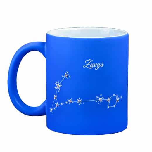 puodelis-zuvu-zvaigzdynas