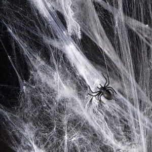 Helovino dekoracija, voratinklis su voriukais